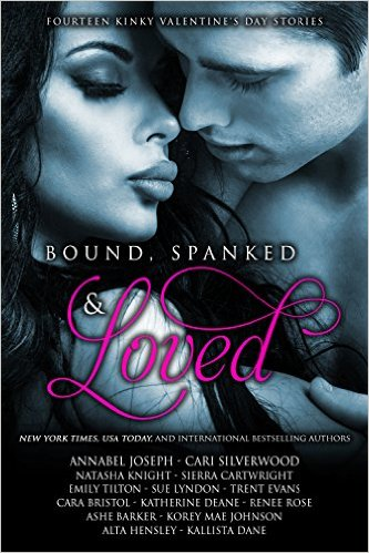 14 NY Times Bestselling Authors & USA Today Bestselling Authors STeamy Romance Box Set Deal